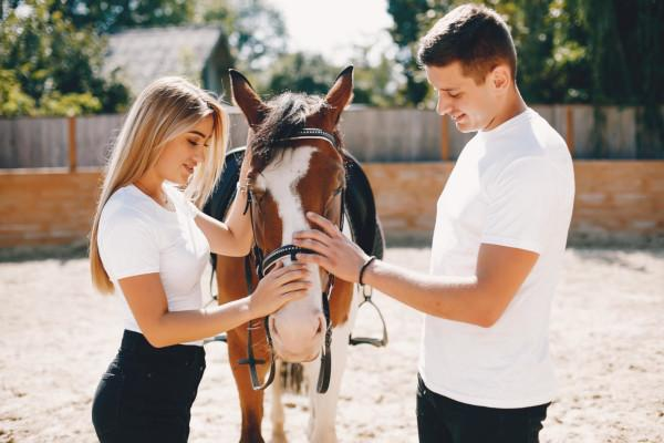 Cute couple with a horses. Lady in a white t-shirt. Pair in a summer park