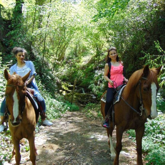 People riding horse in the woods of Vesuvius National Park
